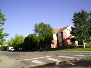 Broomfield CO Real Estate