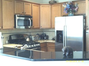 Condo on Market in Broadlands Broomfield CO